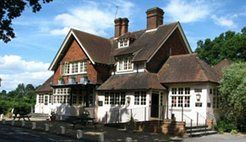 The Olive Tree, Sutton Green, Guildford, Surrey, UK